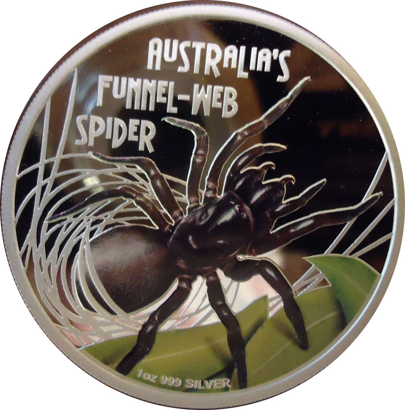 Funnel Web Spider Coin