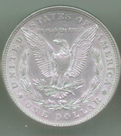 Morgan 1884 Reverse