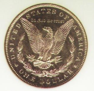 Morgan 1886 Reverse